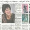 48-2012_01_10_Domažlický-deník
