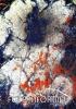 04_Kamenný-květ_Stony-Blossom-2008