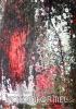 05_Ohlas-vášně_Echo-of-Passion-2011